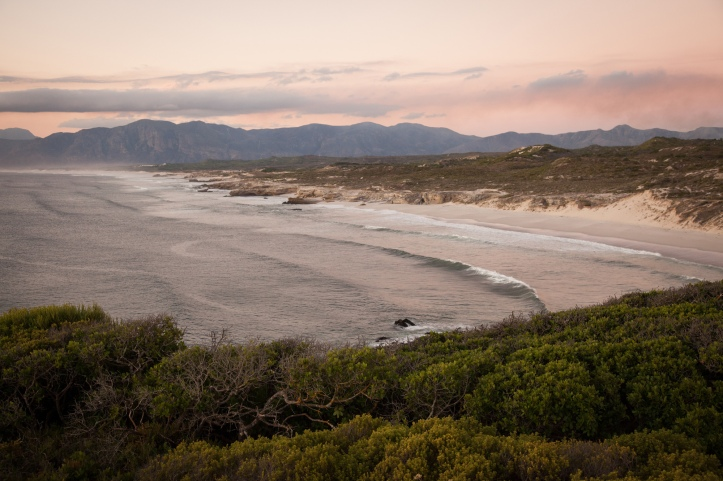 web-grootbos-experience-coastal-safari-beach-04